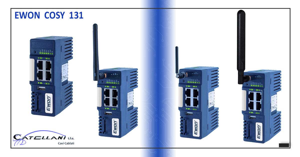 Teleassistenza EWON 2020